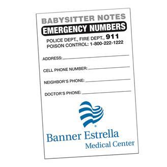 BSND - Babysitter Notes Full Color